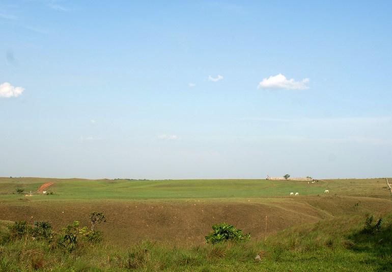 Nueva Reforma Rural profundiza acumulación de baldíos
