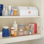 Medicine Cabinet Organizer Linus Medicine Cabinet Organizer The Container Store