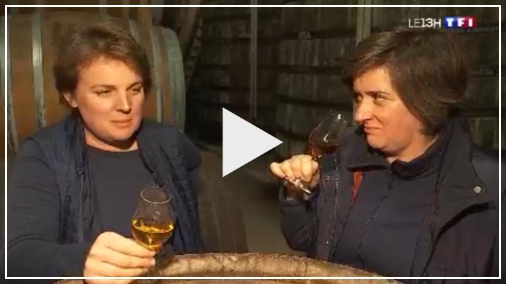 Le reportage de TF1 sur notre vignoble diffusé en direct le 30 décembre