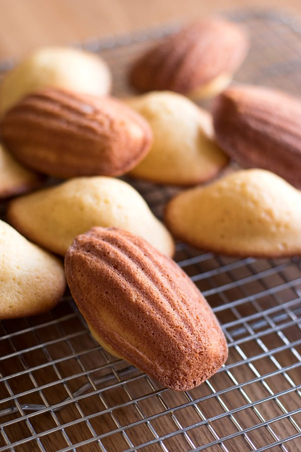 Freshly baked French madeleines cooling on rack.