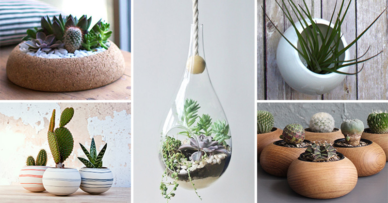 16 Gift Ideas For Those Who Love Little Gardens CONTEMPORIST