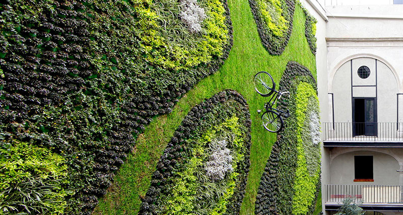 A bike was added to this huge green wall for a bit of