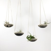 Air Plant Holder. Amazing Marble Air Plant Holder With Air ...