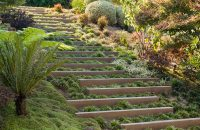 Landscape Design Idea - Steps With Integrated Greenery ...
