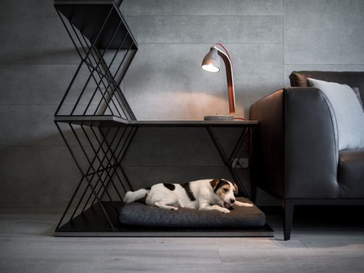 A combined dog bed, side table, and room divider was designed for this apartment