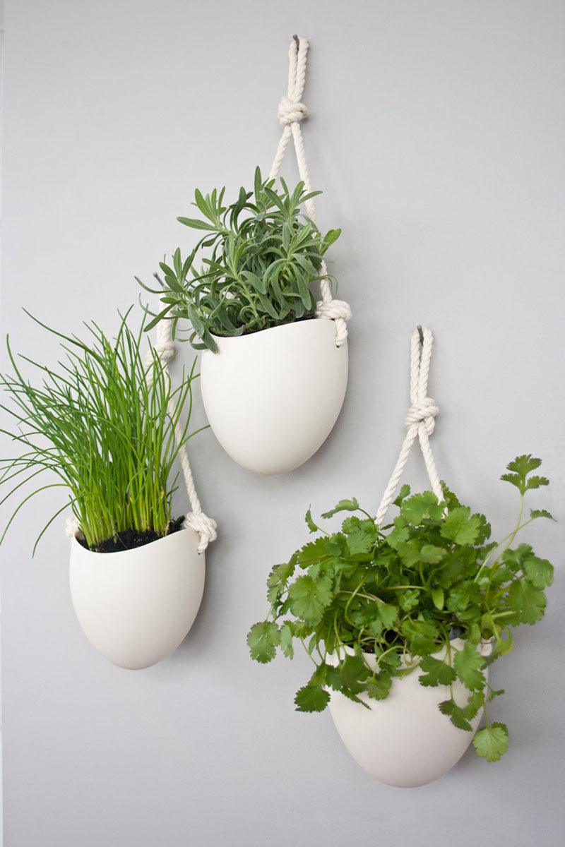 Indoor Herb Garden Wall Mounted