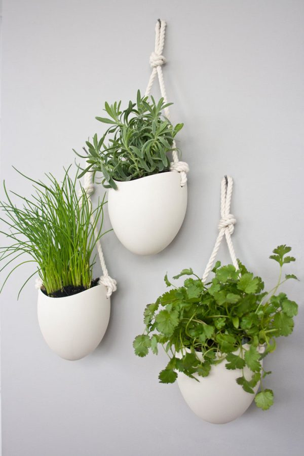 Modern Wall Mounted Plant Holders Decorate Bare Walls Contemporist