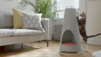 This Cone-shaped Object Is Both A Scratching Post And A ...