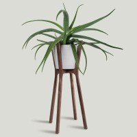 These 13 Modern Plant Stands Put Your Favorite Plants On ...