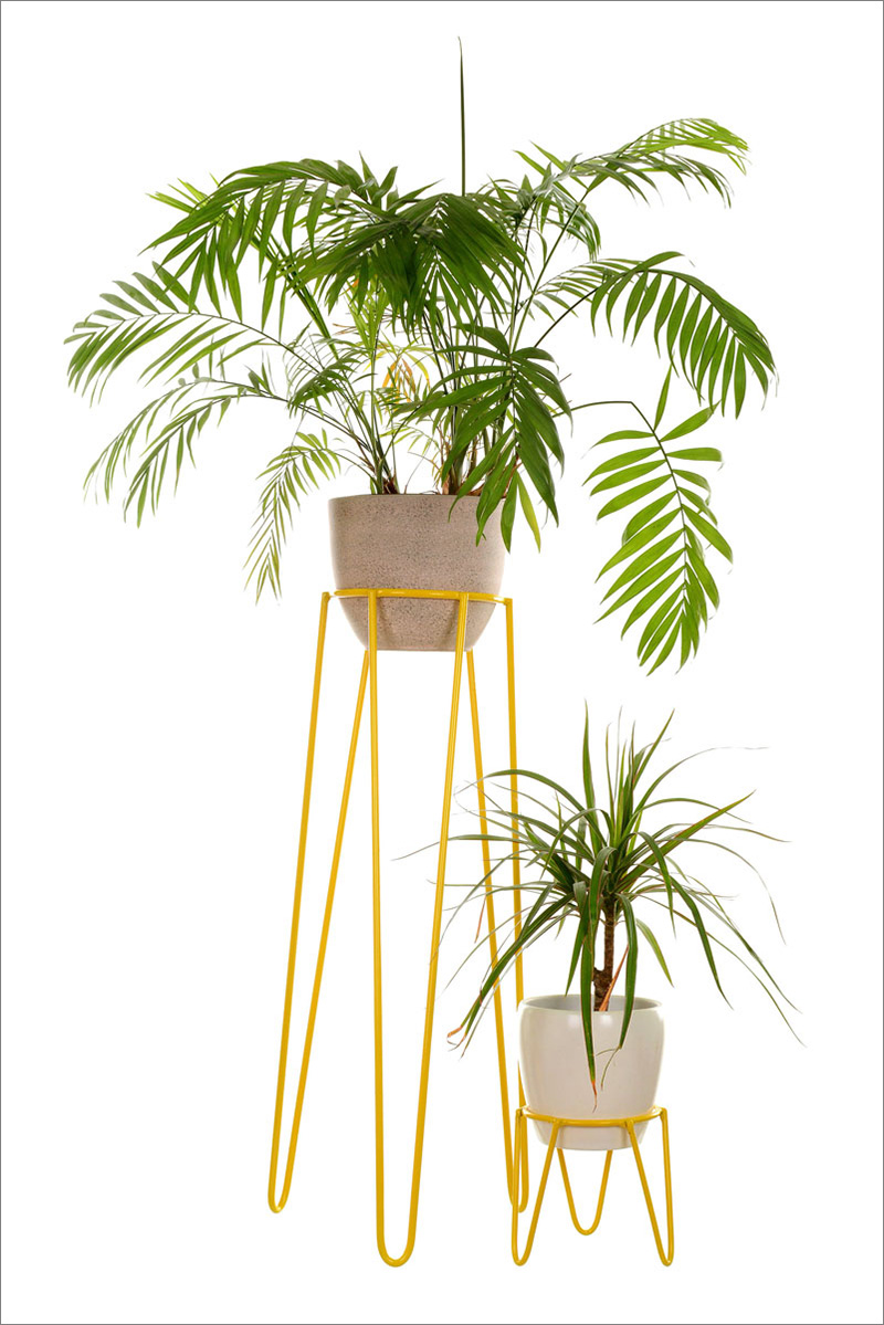 These 13 Modern Plant Stands Put Your Favorite Plants On Display
