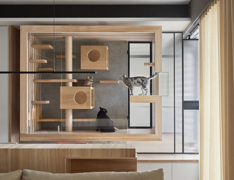 INDOT have designed a custom, built-in modern cat enclosure that creates a paradise for them to rest, play or look outside. #Cats #InteriorDesign