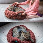 Cat Bed Ideas Chunky Knit Cat Beds By Bureburepets