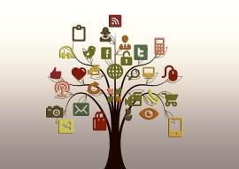 réseaux clients