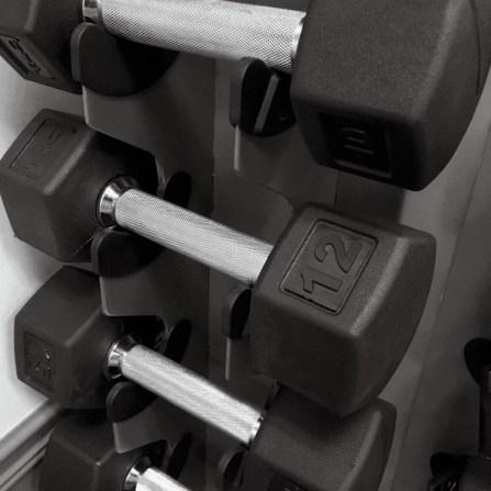 HealthWage Weight Loss Motivation Dumbbells
