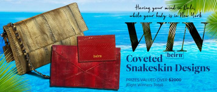 Beirn HandBags Giveaway – Stand Chance to Win Clutch, Credit Card Case