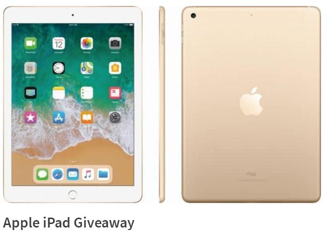 Steamy Kitchen Apple iPad Giveaway – Win Apple iPad Mini