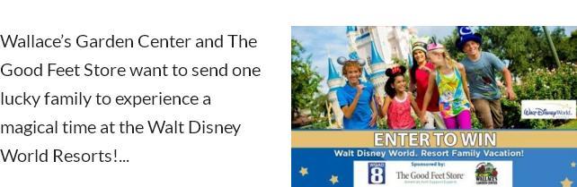 Walt Disney World Resort Family Vacation Sweepstakes