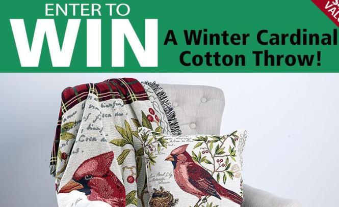 Winter Cardinal Cotton Throw Sweepstakes