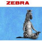 Find Zen During Back to School Sweepstakes – Win $1,125 Zebra Backpack
