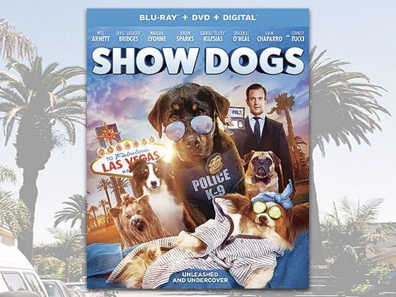Show Dogs Sweepstakes