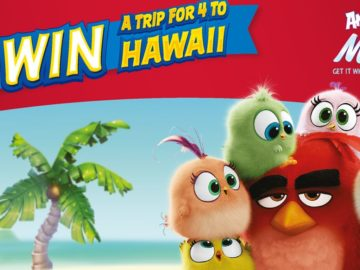 Angry Birds Sweepstakes