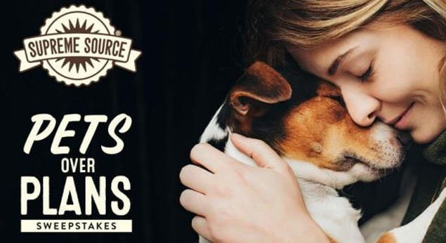 Photo contests for pets with cash prizes