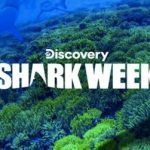 Dish Discovery Channel Shark Week Sweepstakes – Win Trip