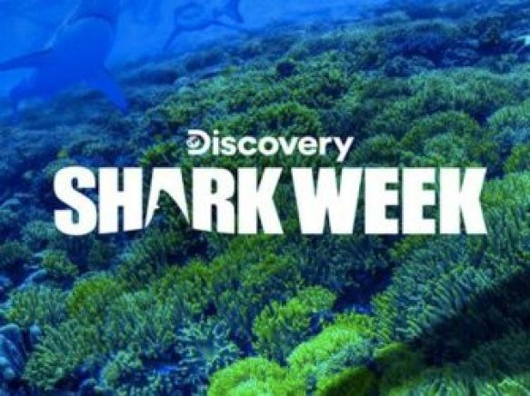 Dish Discovery Channel Shark Week Sweepstakes - Win Trip