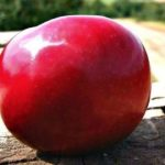 Honeycrisp Apples Giveaway
