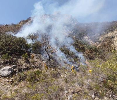 Extinguen en su totalidad incendio forestal en el Cerro del Fraile en Guanajuato capital