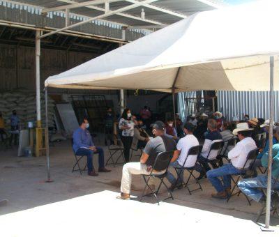Fomentan los cultivos alternativos en Ocampo