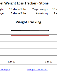 Excel weight tracker stone also loss rh contextures