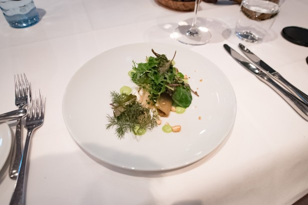 Tian, Vegetarian Restaurant in Munich - Chicory, buttermilk mousse, dill