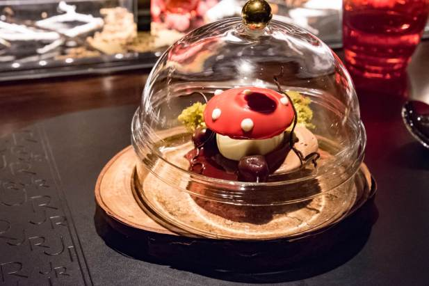 L'Atelier Robuchon in Montreal - The beautiful mushroom for dessert