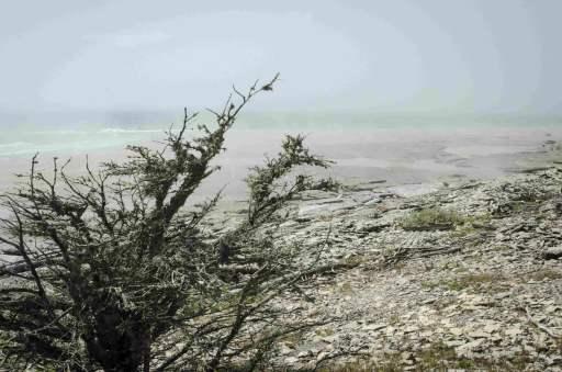 Havre-Saint-Pierre: La nature autour de la ville est superbe