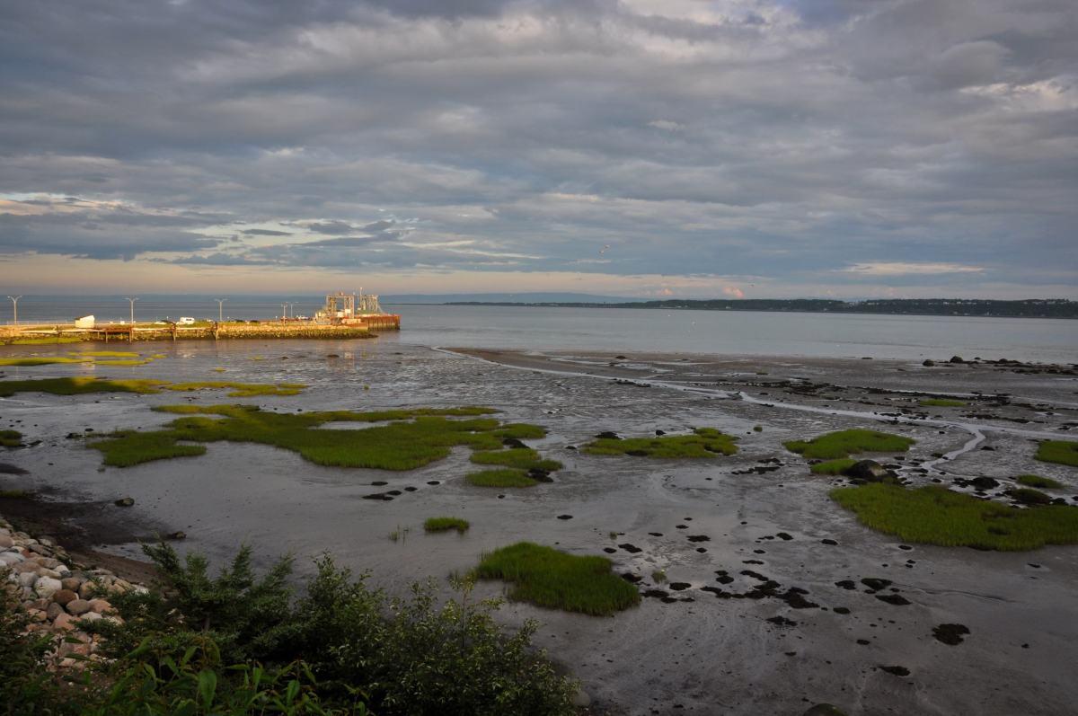 La vue de St-Joseph-de-la-Rive - Photo libre de droits