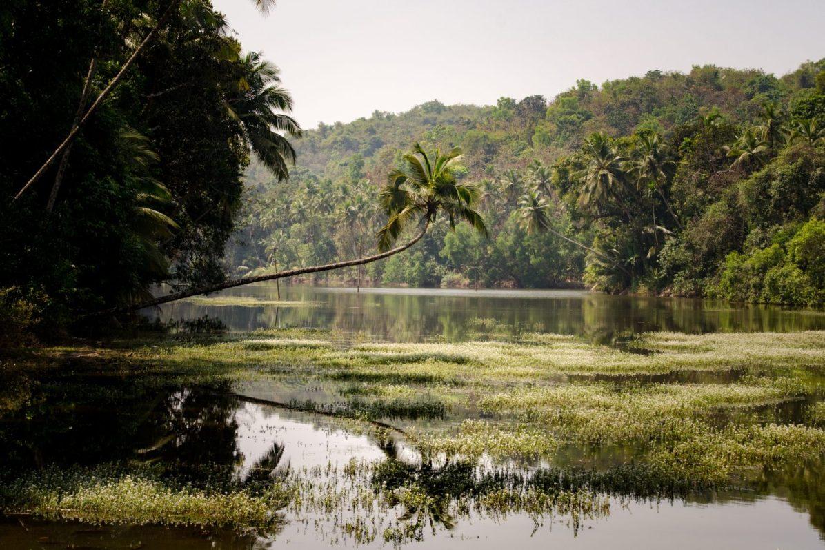 Trip to Goa: It's beautiful