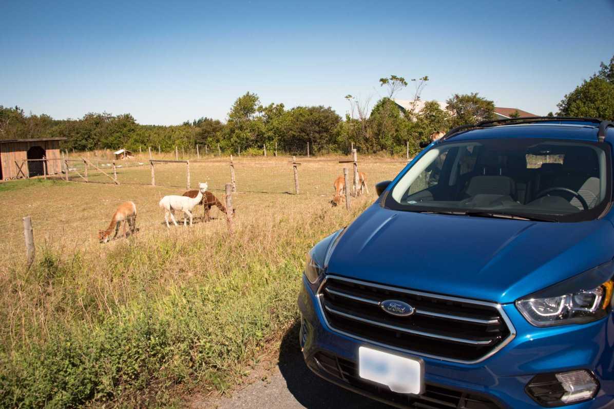Roadtrip dans le Bas-St-Laurent: Ford Escape 2017