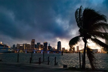 The Miami Skyline, Florida