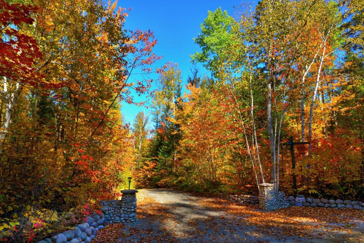 Voyage Québec : les couleurs de l'automne