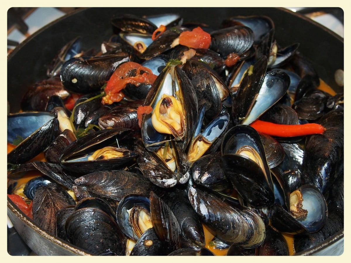 Anthony Bourdain Croatia- Dagnje na Buzaru (Croatian Mussels) - photo by PxHere under CC0