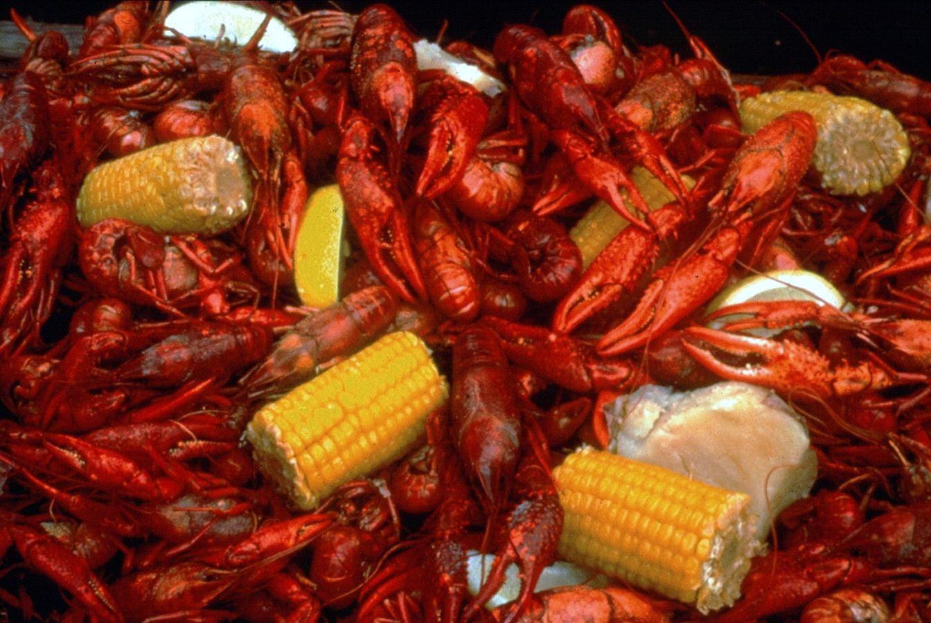 Cajun Style Crawfish Boils - photo by KLaCombe under CC-Zero