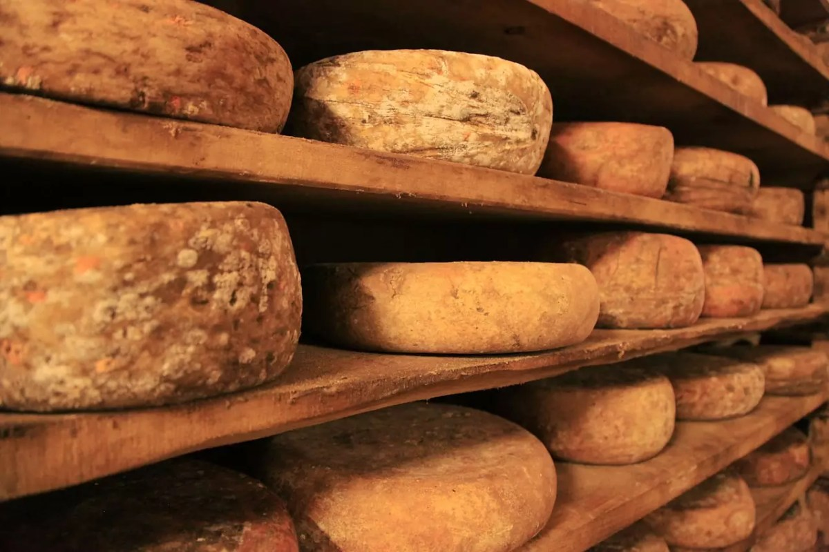 Cheese Wheels - photo by SplitShire under Pixabay License