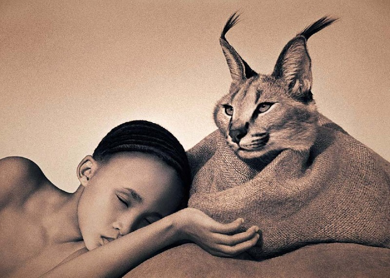Arch2o-Nature-Masterpieces-Gregory-Colbert-14