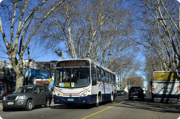 transporte público montevidéu