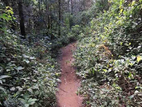 Caminho mais fechado Pedra Redonda