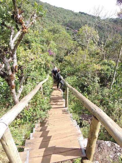 Escadas na trilha Pedra Redonda