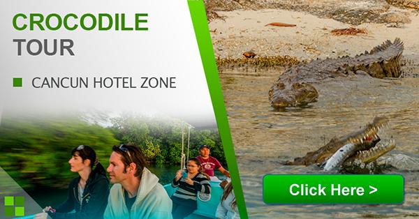 crocodile-adventure-boat-tour-cancun-hotel-zone-mexico