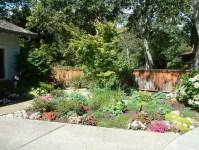 Colorful Backyard Garden