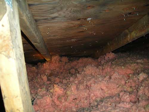 Mold In Attic  Roofing  Contractor Talk